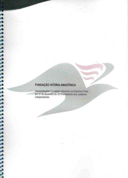 Relatório 2013
